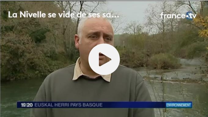 Interview d'Olivier Briard sur les remontées de saumon sur la Nivelle
