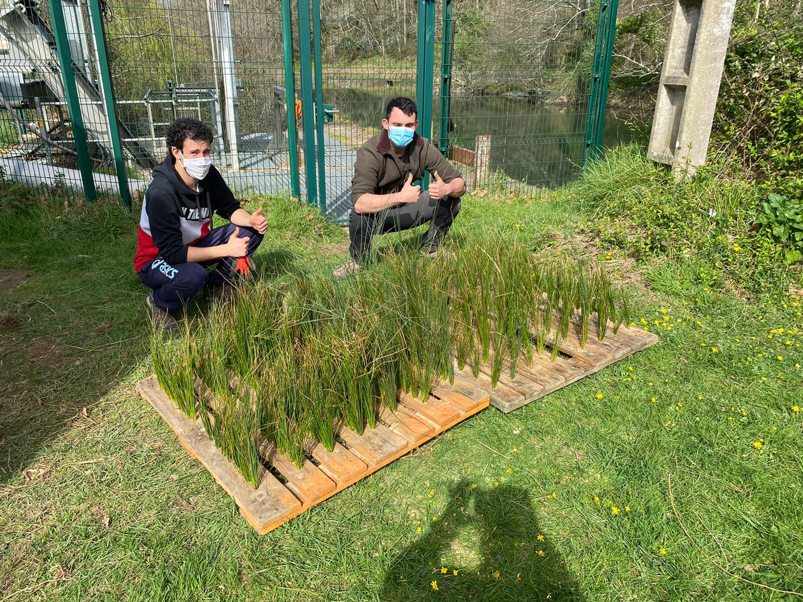 Mise en place de frayères artificielles au Lac de Saint-Pée sur Nivelle